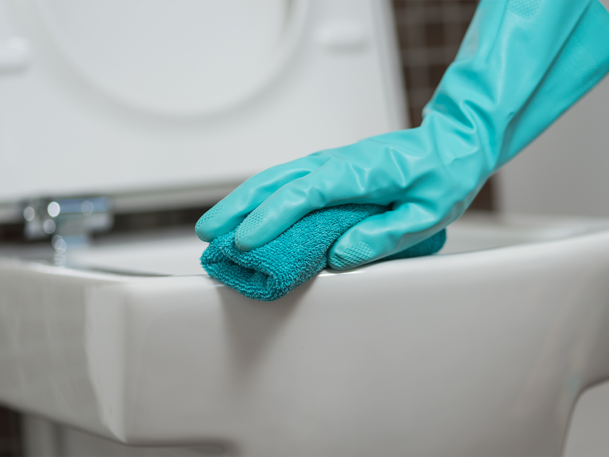 Environmental and Domestic Services
